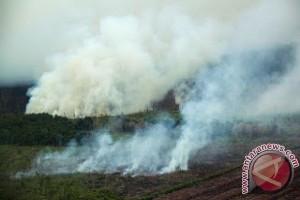 1,5 hektare lahan terbakar di Aceh Besar