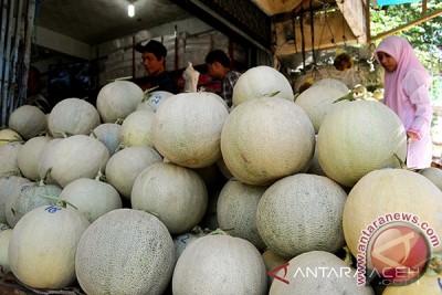 Bupati Aceh Selatan Minta Warga Galakkan Melon