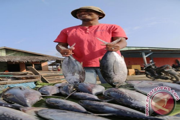 Harga ikan segar di Lhokseumawe naik