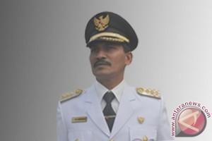 Bupati: Padi komoditas unggulan Aceh Jaya