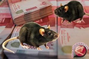BPKP Periksa Kerugian Negara Sejumlah Kasus Korupsi
