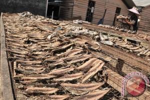 Ikan diawetkan sumbang inflasi di Lhokseumawe