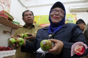 BBPOM sita 1.802 produk pangan ilegal
