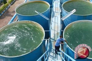Bupati Aceh Selatan diminta selesaikan krisis air