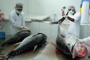 Nilai ekspor Aceh oktober naik 28,66 persen