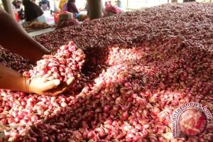 Harga bawang merah naik di Lhokseumawe