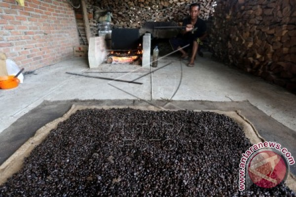 Ekspor kopi Aceh tembus 53,4 juta dolar