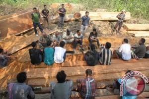 TNI amankan kayu ilegal di Aceh Utara