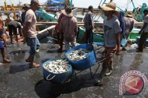 Tangkapan ikan nelayan Aceh Barat mulai membaik