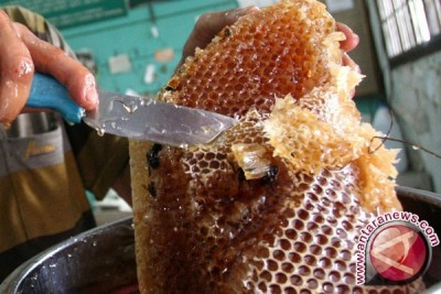Polisi Lhokseumawe lipahkan kasus madu palsu