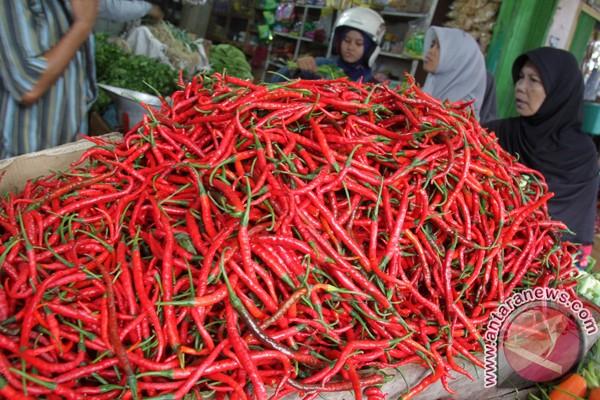 Harga cabai merah di Lhokseumawe merosot