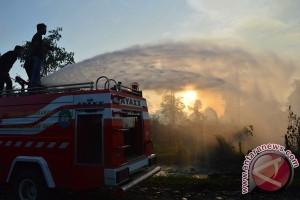 Kebun sawit di Nagan Raya terbakar