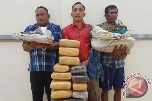 Polisi Tamiang gerebek bandar ganja