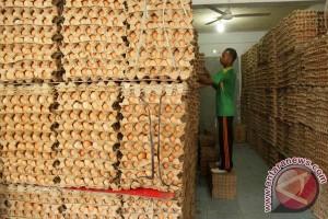 Harga telur di Lhokseumawe naik 20 persen