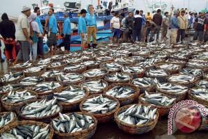 Tangkapan banyak harga ikan turun di Lhokseumawe