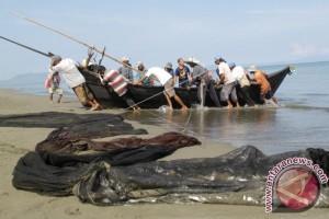50 persen nelayan Abdya belum kantongi KTA