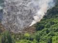 Pembakaran Hutan