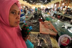 Harga Ikan Melambung
