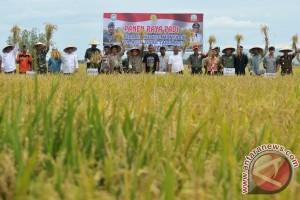 TNI ajak petani Aceh tingkatkan produktivitas