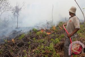 Tiga titik panas terdeteksi di Aceh