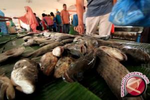 Harga ikan stabil di Sabang