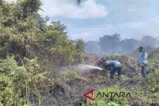 Dua hektare lahan rumbia terbakar di Aceh Besar