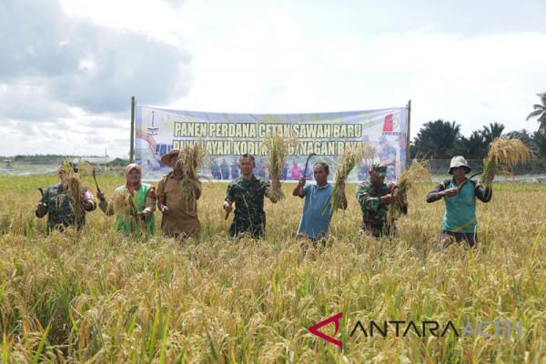 Ekonomi Aceh triwulan tiga tumbuh 3,75 persen