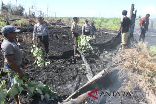 Dandim: karhutla di Nagan Raya terkendali