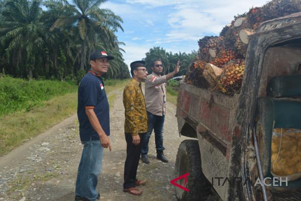 Pemerintah diminta turun tangan atasi harga sawit