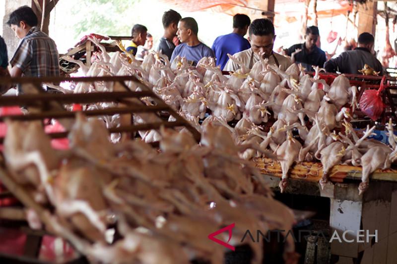 Kampanyekan daging ayam Asuh