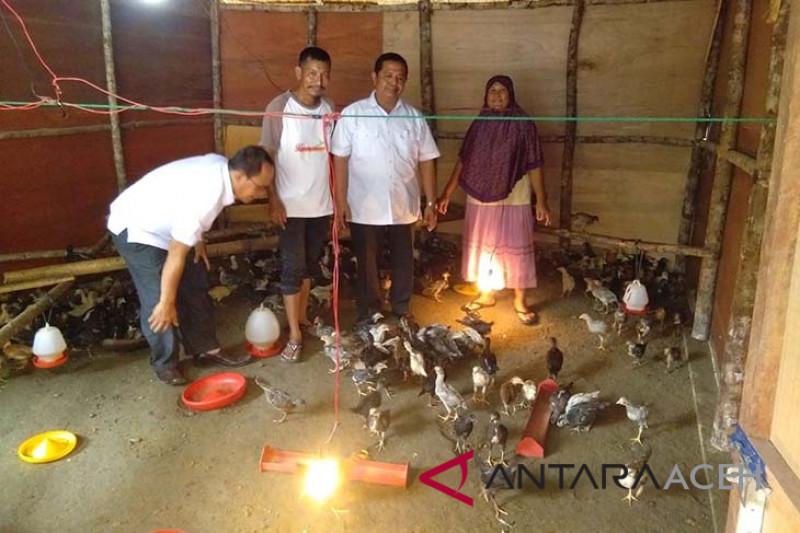 96 gampong di Abdya kembangkan ayam KUB