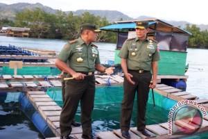 Panglima TNI Ajak Masyarakat Investasi Budidaya Laut