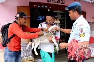 Dinkes Ambon Imbau Warga Waspadai Rabies
