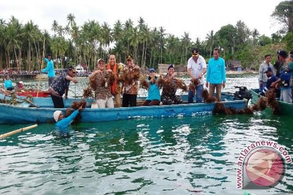 Lanal Saumlaki dan INPEX Panen Rumput Laut
