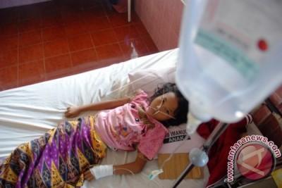 Kasus Malaria di Ambon 1.346 Penderita