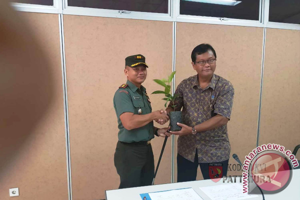 LIPI Certifies Torem As Endemic Tree