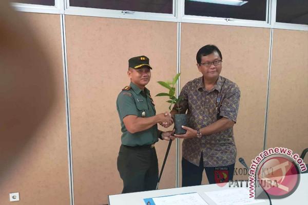 LIPI Certifies Torem As Endemic Tree