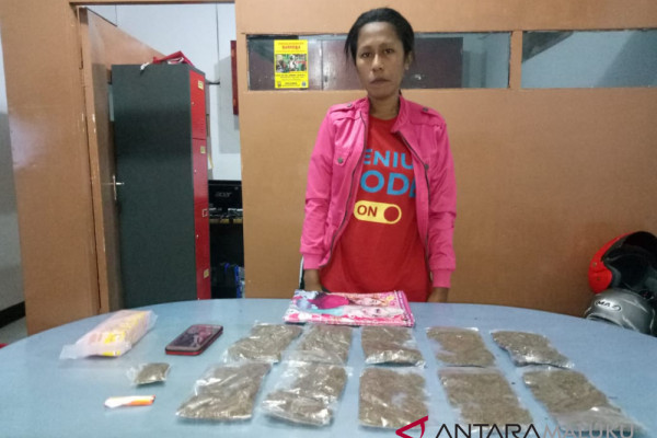 Polisi ringkus wanita pemilik 11 paket ganja