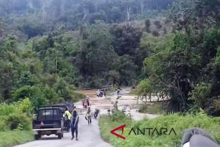 Jalan penghubung antardesa putus akibat banjir