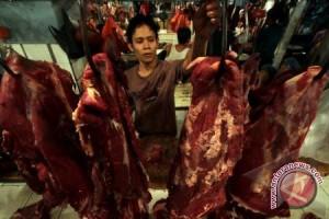 Pedagang Daging Harapkan Pemerintah Perbanyak Sapi Potong