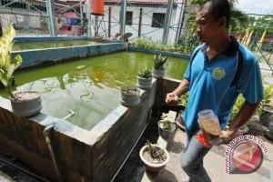 Babel Sediakan 700 Hektare Kawasan Budidaya Ikan