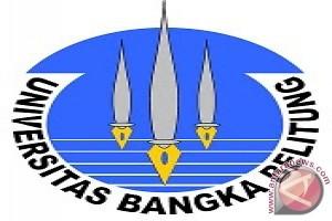 FISIP UBB Gelar Seminar Kilas Balik Pilkada