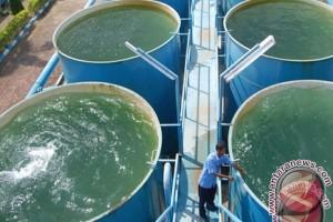 Lipsus - Mengatasi ancaman krisis air di Babel