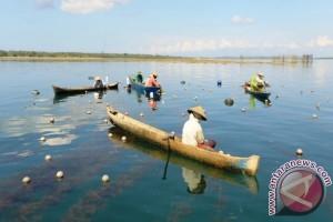 Tragedi Pencemaran Laut Timor Yang Terlupakan