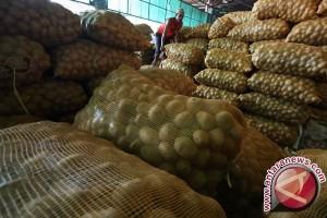 Harga Kentang di Pasar Tradisional Pangkalpinang Masih Bertahan Rp16 Ribu