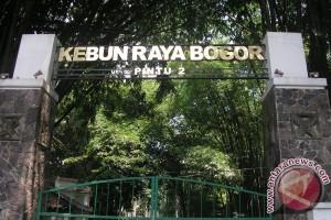 LIPI Dukung Pemerintah Canangkan Kebun Raya