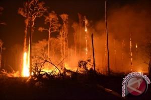 BPBD Lebak Waspadai Kebakaran Musim Kemarau