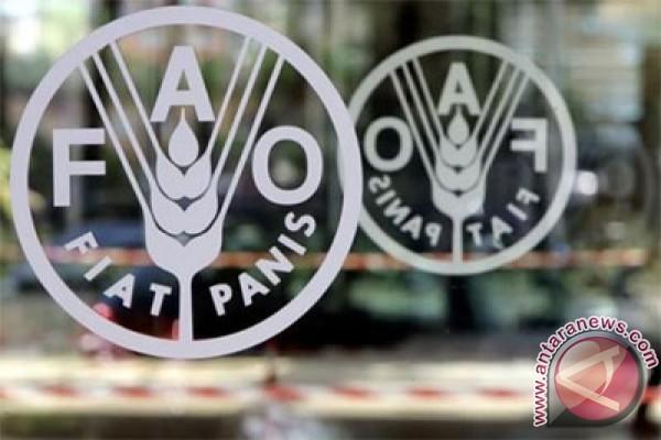 FAO: Harga Pangan Global Turun Pada Maret