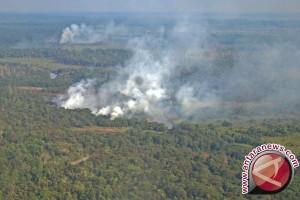 Hektaran Hutan Taman Nasional Baluran Situbondo Terbakar
