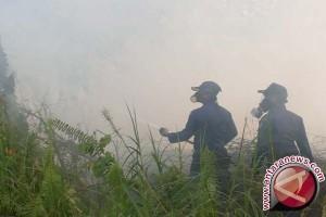 Babel Siagakan 37 Personel Antisipasi Kebakaran Hutan